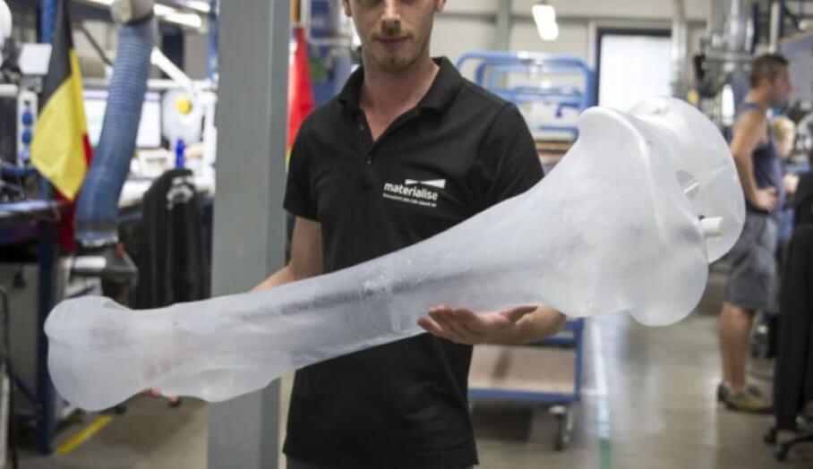 透過3D打印還原整隻長毛象骨骼模型?