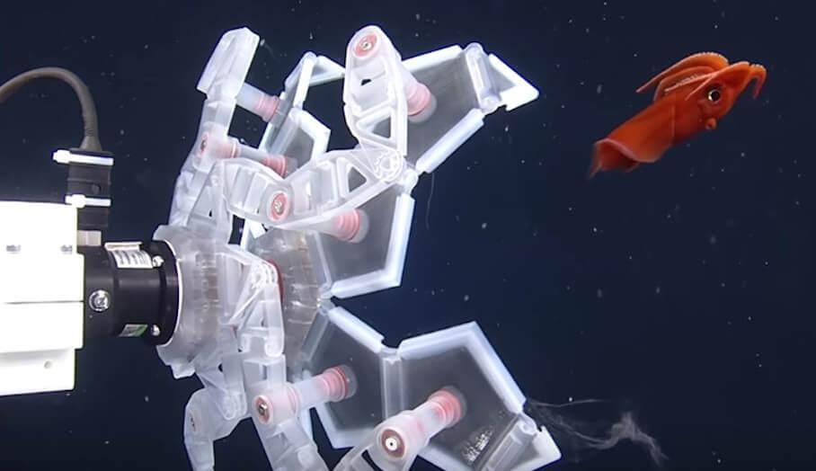 專門捕捉海底生物的3D打印機械爪