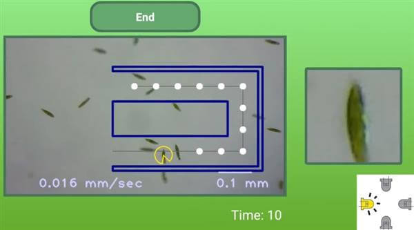 手機加3D打印顯微鏡- 讓學生STEM上玩轉微生物