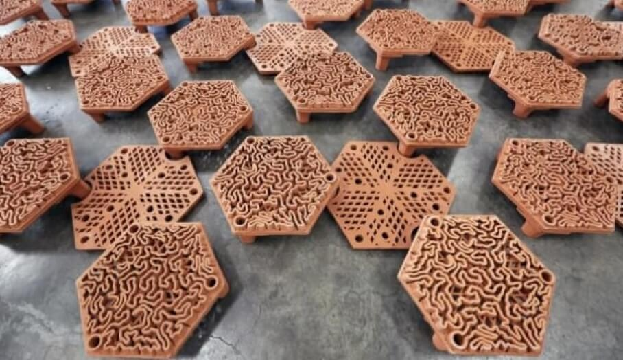 利用3D打印技術拯救香港珊瑚礁?