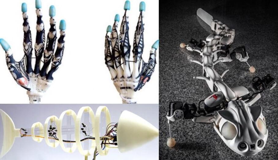 STEM教學讓學生學懂仿生學機械人製作原理